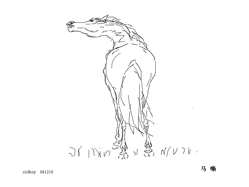 如何画马的简笔画步骤